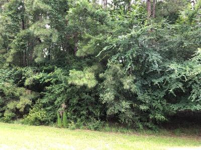 Magnolia Residential Lots & Land For Sale: 22804 Rainfern Drive