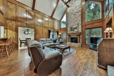 Tomball Single Family Home For Sale: 12430 Exbury Court