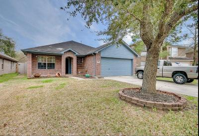 Dickinson Single Family Home For Sale: 2870 Shallow Brook Lane