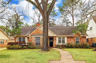 Houston Single Family Home For Sale: 14527 Cindywood Drive