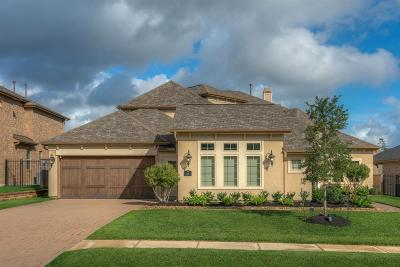 Conroe Single Family Home For Sale: 134 Oak Estates Drive