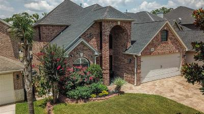 Conroe Single Family Home For Sale: 12394 Pebble View Drive