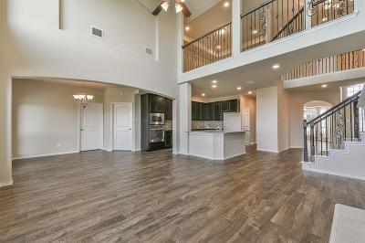 Manvel Single Family Home For Sale: 3901 Lupin Bush Lane