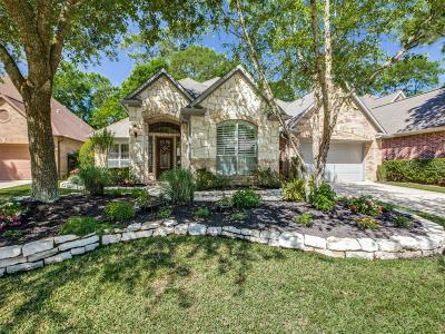 The Woodlands Single Family Home For Sale: 19 Overlyn Place