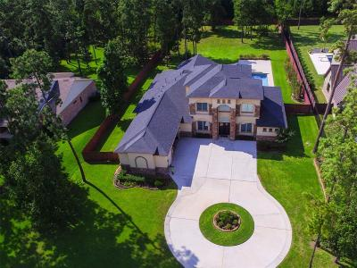 Spring Single Family Home For Sale: 28007 Summerton Drive