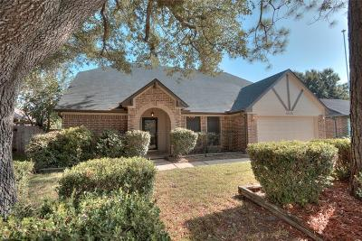 Pearland Single Family Home For Sale: 4615 Kimball Drive
