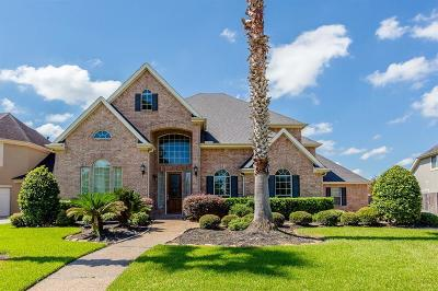 Katy Single Family Home For Sale: 2214 Vinemead Court