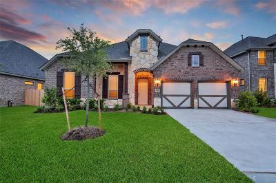 Katy Single Family Home For Sale: 6806 Regal Lakes Drive