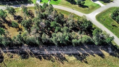 Montgomery Residential Lots & Land For Sale: 8983 Wind Jammer Lane