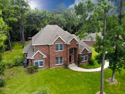 Magnolia Single Family Home For Sale: 20302 Country Lake Drive