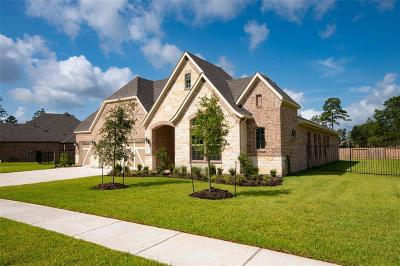 Conroe Single Family Home For Sale: 14004 S Evergreen Ridge Court