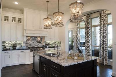 Montgomery Single Family Home For Sale: 117 Larkhaven Drive