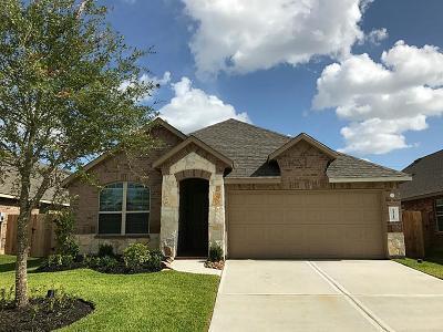 Katy Single Family Home For Sale: 23715 Rivage Ridge Drive