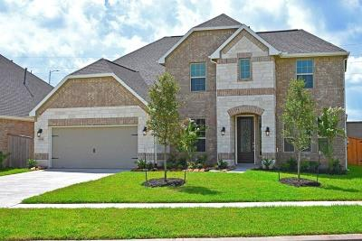 Sugar Land Single Family Home For Sale: 6222 Garden Lakes Lane