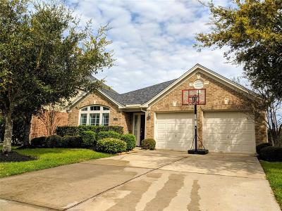 Katy Single Family Home For Sale: 28210 Sweet Oak Lane