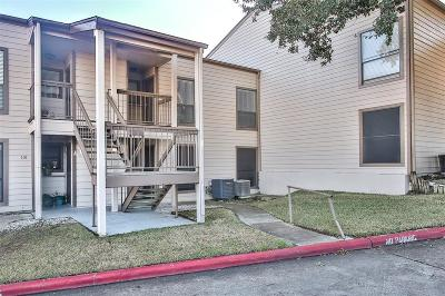 Conroe Condo/Townhouse For Sale: 202 Lakeview Terrace