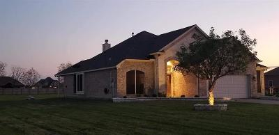 Baytown Single Family Home For Sale: 4710 Majestic Drive