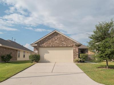 Houston Single Family Home For Sale: 2802 Morgensen Drive