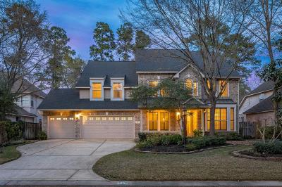 The Woodlands Single Family Home For Sale: 22 N Plum Crest Circle