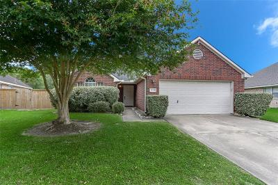 Katy Single Family Home For Sale: 21126 Terrace View Drive