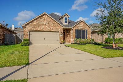 Fulshear Single Family Home For Sale: 3426 Smart Sands Lane