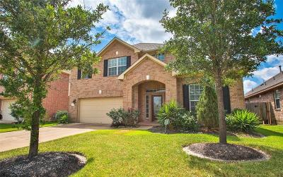 Tomball Single Family Home For Sale: 9019 Blanefield Lane