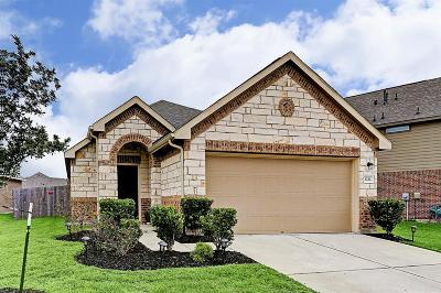 Single Family Home For Sale: 3722 Alexander Arbor Drive