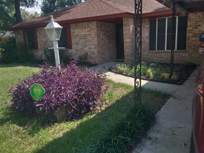 Houston Single Family Home For Sale: 17505 Wild Oak Drive