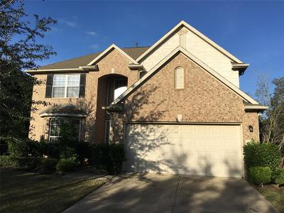 Katy Single Family Home For Sale: 6115 Summerfield Glade Lane