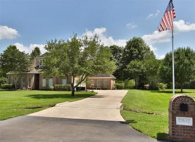 Tomball Single Family Home For Sale: 17507 S Yaupon Circle