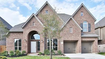 Pearland Single Family Home For Sale: 3428 Golden Cypress Lane