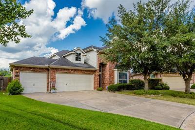 Houston Single Family Home For Sale: 17202 Ambermist Lane