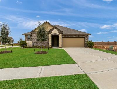 Texas City Single Family Home For Sale: 3207 Red Pebble Lane