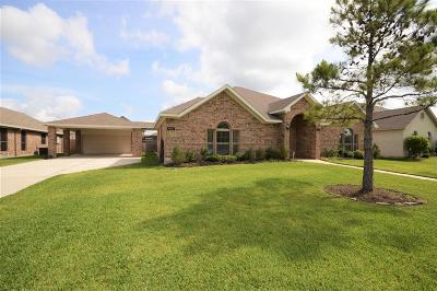 Manvel Single Family Home For Sale: 6607 Sam Rayburn Drive