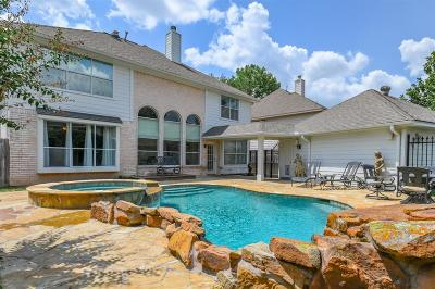 Houston Single Family Home For Sale: 9310 Point Park Drive