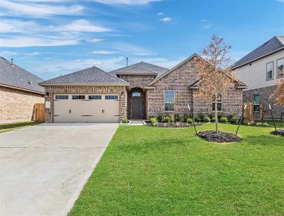 Rosenberg Single Family Home For Sale: 7919 Blue Lake Drive