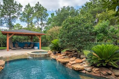 The Woodlands Single Family Home For Sale: 83 W Racing Cloud Court