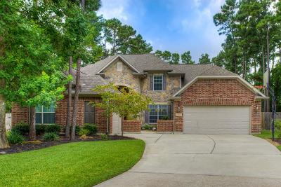 The Woodlands Single Family Home For Sale: 6 Drewdale Court