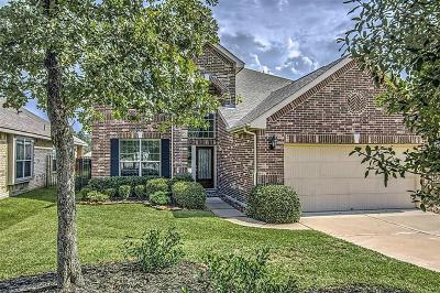 Single Family Home For Sale: 38 Black Swan Court