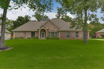 Montgomery Single Family Home For Sale: 18870 Mystic Pt