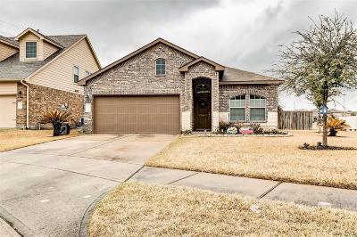 Tomball Single Family Home For Sale: 24407 Sandusky Drive