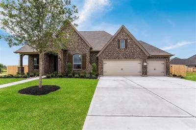 League City Single Family Home For Sale: 1703 Waterlilly River Lane