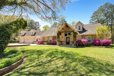 Hockley Single Family Home For Sale: 26100 Century Oaks Boulevard