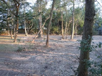 Humble Residential Lots & Land For Sale: 21222 Atascocita Point Drive