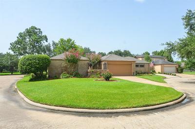 Houston Single Family Home For Sale: 4050 Heathersage Drive