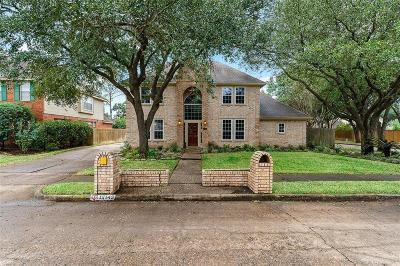 Houston Single Family Home For Sale: 12143 Meadow Lake Drive