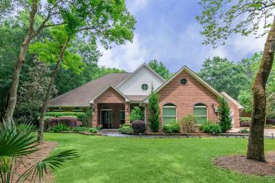 Spring Single Family Home For Sale: 3502 W Benders Landing Boulevard