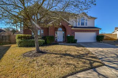 Houston Single Family Home For Sale: 16611 Dawson Mill Court