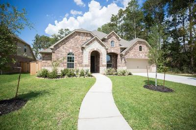 Porter Single Family Home For Sale: 9307 Providence Bend Lane