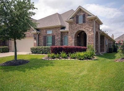 League City Single Family Home For Sale: 4615 Hispania View Drive